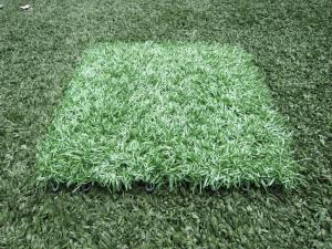 China Waterproof 12800Dtex Fake Artificial Grass Flooring Lawn with Plastic Base for Park on sale