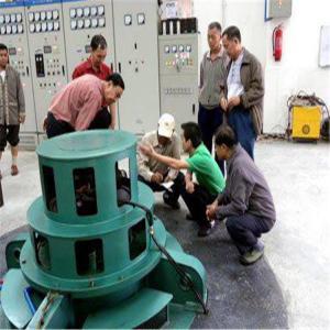 China Hydro power generators,50kw 100kw 5000kw low permanent magnet alternator for water power turbine on sale
