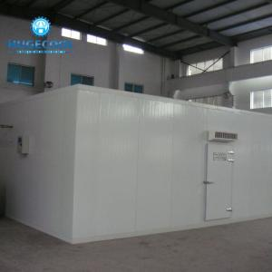 China Walk In Blast Cold Room , Blast Freezer Room With  Full Automatic Controlling on sale