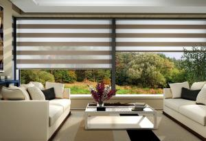 China Motorized Sheer Roller Blinds | Bintronic on sale