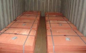 China COPPER CATHODES  99.9% on sale