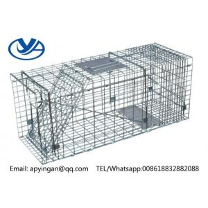 China Live Animal Cage Trap on sale
