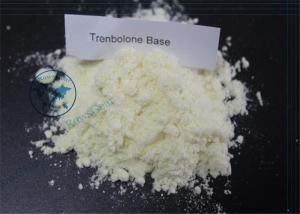 China Powerful Anabolic Steroid Trenbolone Base For Energy Increase and Muscle Building on sale