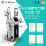 Factory price CE approved 4 cryo handles fat freezing weight loss cryolipolysisfa cool sculpting  machine