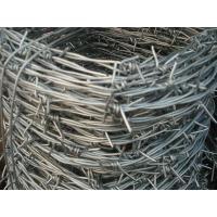 China 2.0mm * 2.5mm Galvanized Barbed Wire Hot Dip Galvanized Iron Wire Fence on sale