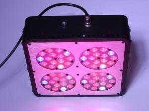 China diy led grow light kits on sale