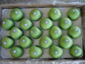 China Fresh Granny Smith Apples on sale