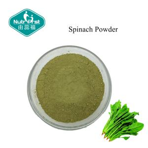 China 100% Pure Light Green Spinach Powder for Foods & Beverage Fruit & Vegetable Powder on sale