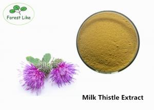 China Medicine Plant Extract Powder Silybum Marianum Extract 80% Silymarin Silybin Liver Protect on sale
