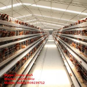 China Cheap Price Poultry Farm Cage Layer Chicken Coop For 5000 Chickens on sale