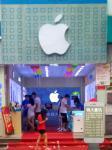 China P5 Single White Disruptive Revolution Advertising LED Screens Shop planter Shop user wholesale