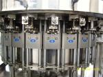 Automatic Glass Bottle Sparkling Water Carbonated Drink Filling Machine SUS304 Material