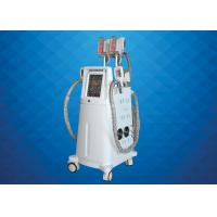 China Vacuum Cryo Fat Freezing Machine , Body Shaping Cryolipolysis Fat Freezing Machine on sale