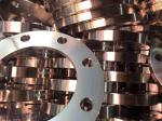 Forged DN150 Sch40 Cdwn014 Stainless Steel Flanges