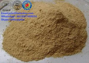 China Sell Pharmaceutical Raw Materials Guarana Seed Extract Powder with High Reputation CAS: 58-08-2 on sale