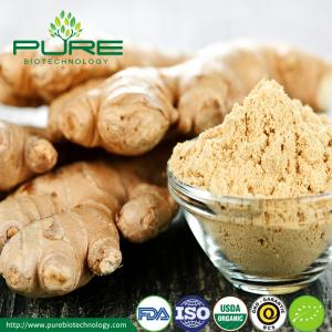 China Organic Dried Ginger Powder on sale