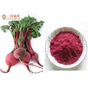 China Poudre caractéristique de racine de betterave de goût efficace en abaissant l'hypertension on sale