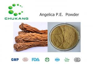 China Natural Ingredients Powder Angelica Extract CAS 4431 01 0 Natural Herb Powder on sale