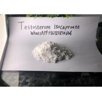 China Testosterone Isocaproate Legal Injectable Steroids Drug Assist on sale