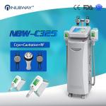 Cryo +RF+ cavitation in one 5 handles Cryo fat freezing machine for Europe