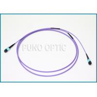 China 24 Fibers MMF MTP Fiber Optic Cable Multifibre Pre-Terminated Violet Patch Cord on sale