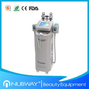China Hot promotion!!!!! 2014 Newest Beauty Equipment Cryolipolysis Fat Reducing Machine on sale