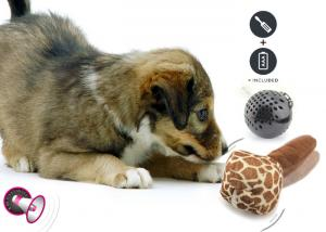 China Eco Friendly Plastic Dog Toys , Interactive Durable Dog Balls For Training on sale