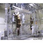 牛虐殺の死体の処理は柵を運びます