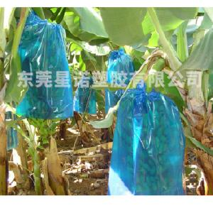 China Plastic PE Banana  Bunch Protection bag on sale