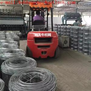 China electric fencing for horse/livestock fencing/field fence/rural fencing/horse fence wire/sheep fencing/no climb fence on sale