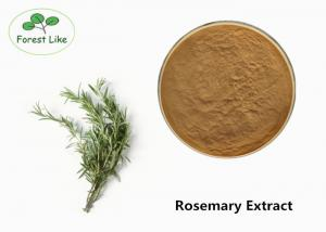 China Brown Plant Extract Powder Rosemary Leaf Extract 10% Carnosic Acid on sale