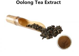 China Oolong Tea Extract Losing Weight Ant I- Aging, 30% Polyphenols Natural Herbal Extracts on sale