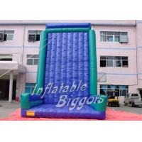 Adult Inflatable Climbing Wall