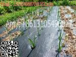 woven geotextile Plastic Modling Type Mulch plastic film for agriculture weed barrier