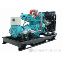 6-30kw Biogas Generator Set