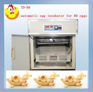 China small egg incubator TD-88 on sale