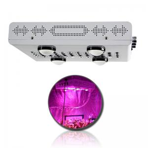 China 2018 New Products 600W 900W 1200W Dimmable LED Grow Light for Vge and Bloom on sale