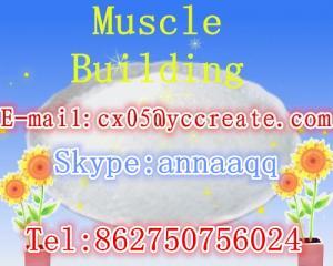 China High Quality feed additive Nicotinic acid on sale