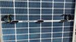 JA Solar Mono Cell TUV 500 Watt Monocrystalline Solar Panel