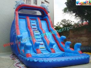 China Giant Dolphin Outdoor Inflatable Water Slides , Three Line Inflatable Water Slide Pool on sale
