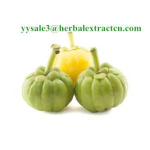 China Garcinia Cambogia Extract  natural weight lose ingredient Hydroxycitric Acid 50% Chinese exporter on sale