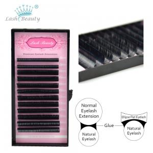 China eyelash extension supplies russian volume eyelash extensions lash extensions individual on sale