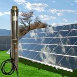 Whaleflo Farmland Irrigation Solar Pump 180W 5ton/Hour Solar DC Irrigation Water Pump Sand Resistant
