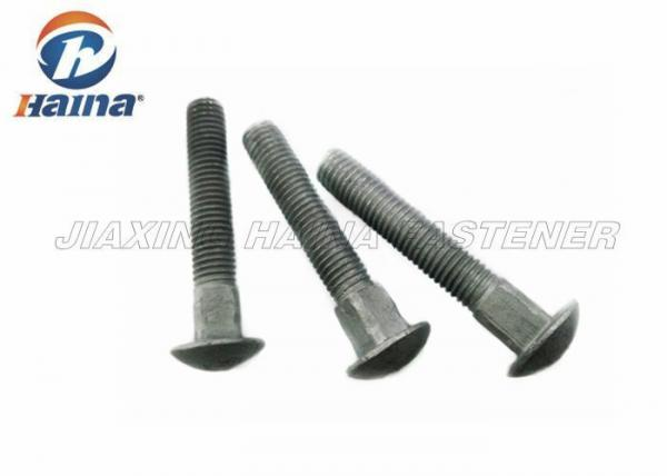 Customized Large Carriage Head Bolt HDG Treatment M10x60 mm