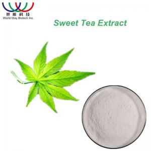 China Pure White Natural Splant Extract Powder , Sugar Substitute Sweet Green Tea Leaf Extract on sale
