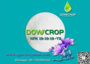 China DOWCROP AGRICULTURE USE 100% WATER SOLUBLE BALANCE FORMULA COMPOUND NPK 19-19-19 WITH TRACE ELEMENTS CRYSTAL POWDER on sale