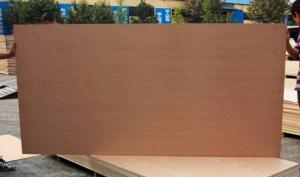 China natural beech veneered plywood &  beech plywood board on sale