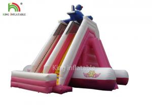 China Customized Size Pink Color PVC Tarpaulin Inflatable Water Slide Outdoor Amusement Park For Kids on sale