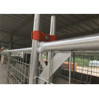China Temporary Fence clamp 80mm ,90mm ,100mm center distance full hot dipped galvanized Australia Made In China 100% quality on sale