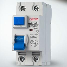 China L2 series 2pole and 4pole residual current circuit breakers on sale
